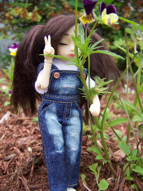http://www.oddpla.net/blog/dolls/dorothy/jju/100_5573.JPG
