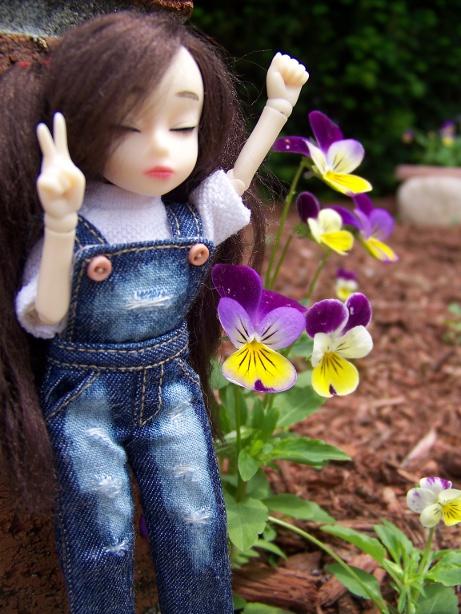 http://www.oddpla.net/blog/dolls/dorothy/jju/100_5581.JPG