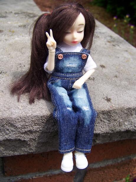 http://www.oddpla.net/blog/dolls/dorothy/jju/100_5586.JPG