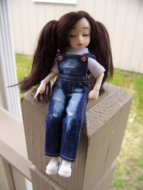 http://www.oddpla.net/blog/dolls/dorothy/spring/100_5541.JPG