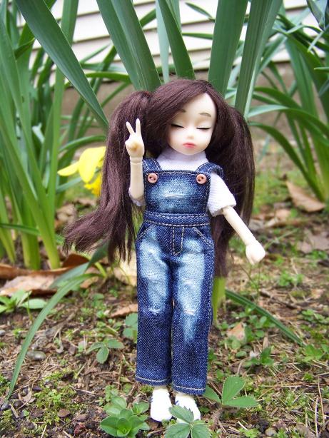 http://www.oddpla.net/blog/dolls/dorothy/spring/100_5544.JPG