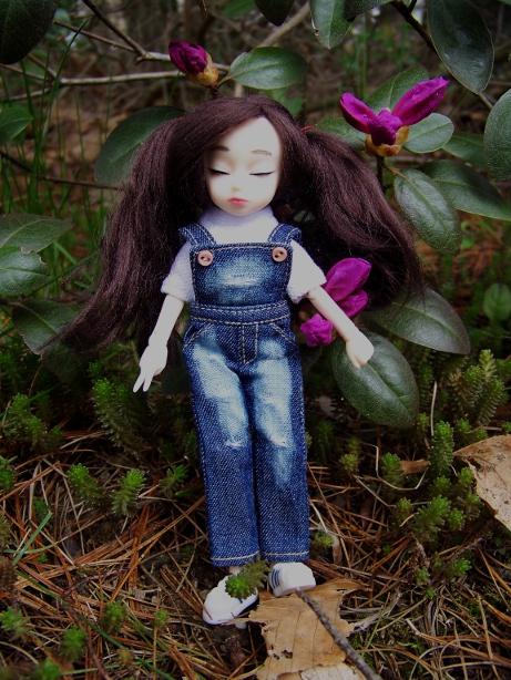 http://www.oddpla.net/blog/dolls/dorothy/spring/100_5545.JPG