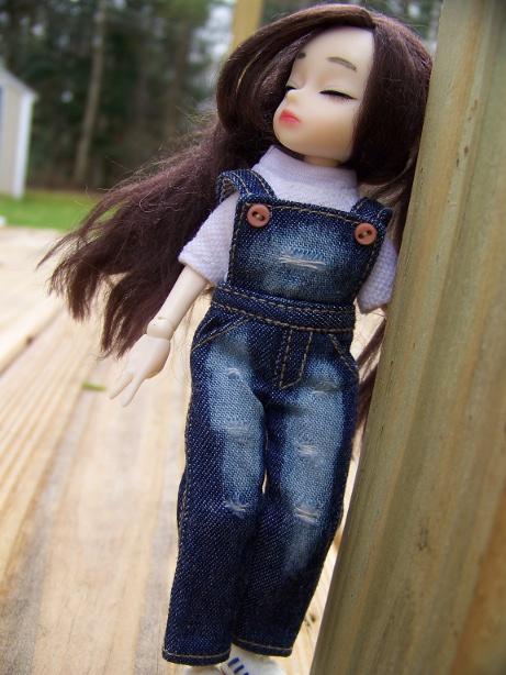http://www.oddpla.net/blog/dolls/dorothy/spring/100_5547.JPG