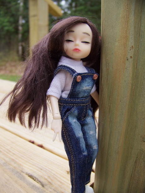 http://www.oddpla.net/blog/dolls/dorothy/spring/100_5549.JPG