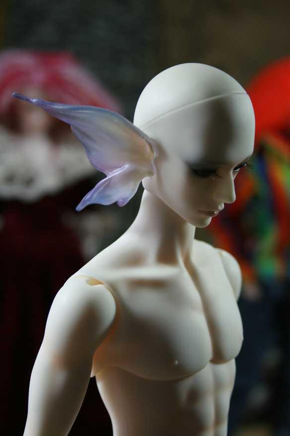 http://www.oddpla.net/blog/dolls/flower/ip/IMG_7554.JPG