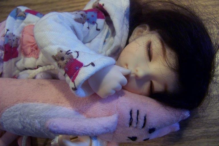 http://www.oddpla.net/blog/dolls/misc/dollclub060609/100_2420.JPG