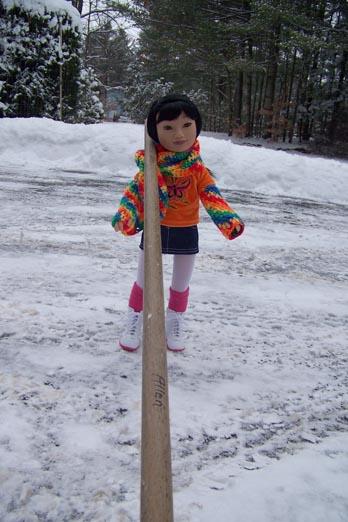http://www.oddpla.net/blog/dolls/misc/karitovt/100_3719.JPG